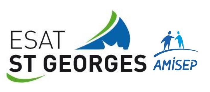 ESAT Saint Georges AMISEP